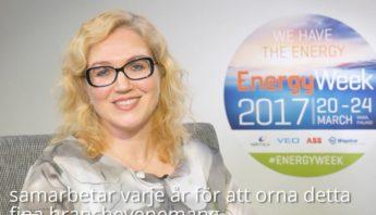 VASEK, EnergyWeek 2017